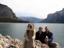 squirrel-photobomb