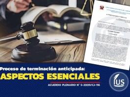 Proceso de terminación anticipada: Aspectos esenciales