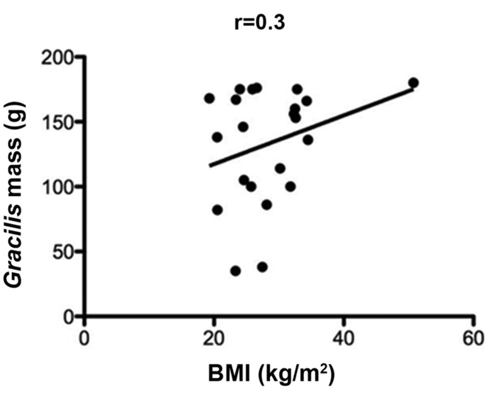 medium resolution of patient height weight bmi and age as predictors of gracilis muscle free flap mass in lower extremity reconstruction