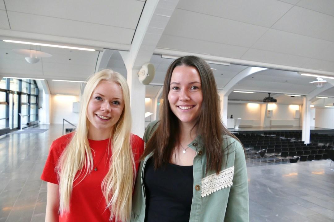 Camilla Paulsen & Christina Bilgrav - Ladybox