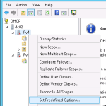 DHCP Set predefined options