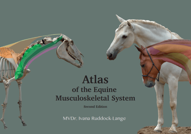 Atlas of the Equine Musculoskeletal System 2nd Edition - Online/PDF