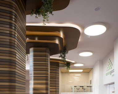 Inspiración arbórea en oficinas de contract en Diseño de showroom de cocinas para Grupo Ramón García