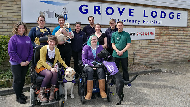 Our Latest News Blogs Grove Lodge Vets
