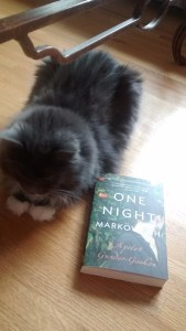 Smokey taking a rest beside her next read