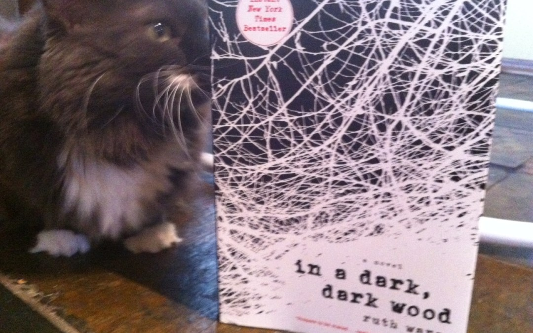 Book Review: In a Dark, Dark Wood by Ruth Ware