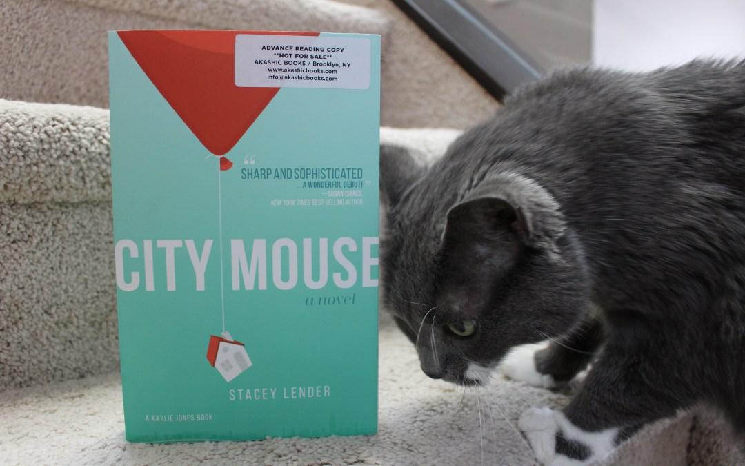 Book Review: City Mouse by Stacey Lender