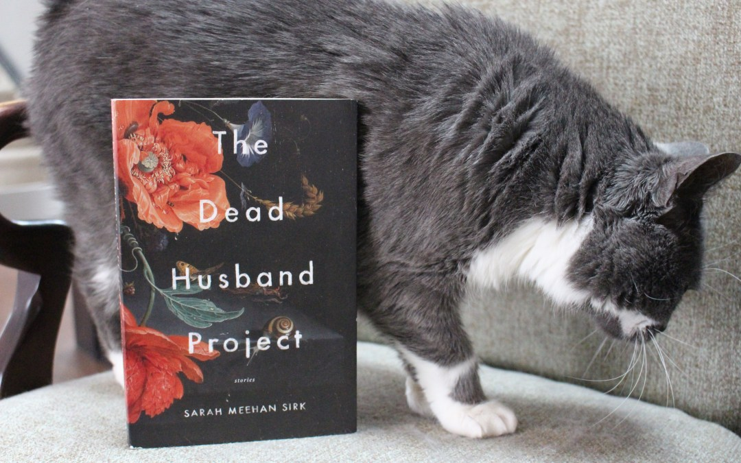Book Review: The Dead Husband Project by Sarah Meehan Sirk