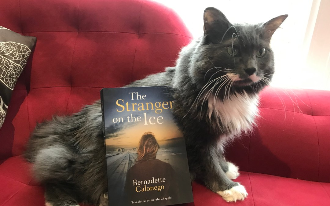 Book Review: The Stranger on the Ice by Bernadette Calonego