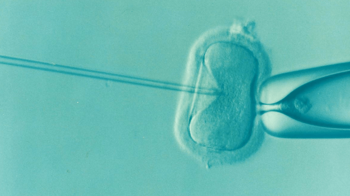 Genome edited CRISPR babies are born