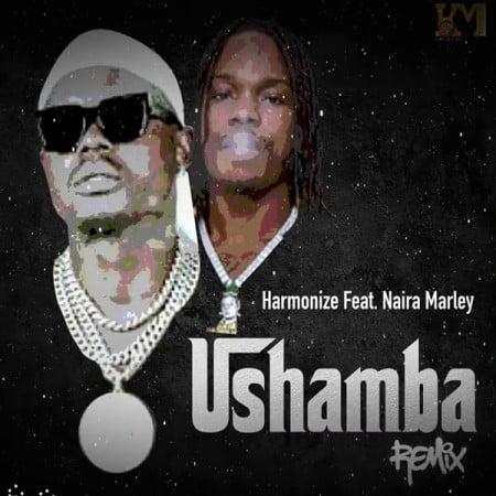 Harmonize – Ushamba (Remix) ft. Naira Marley mp3 download free