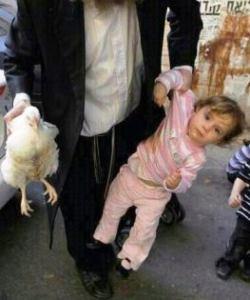 """תרנגול = אדם (באדיבות נתנאל אדלר, מתוך בלוג עונ""""ש)"""