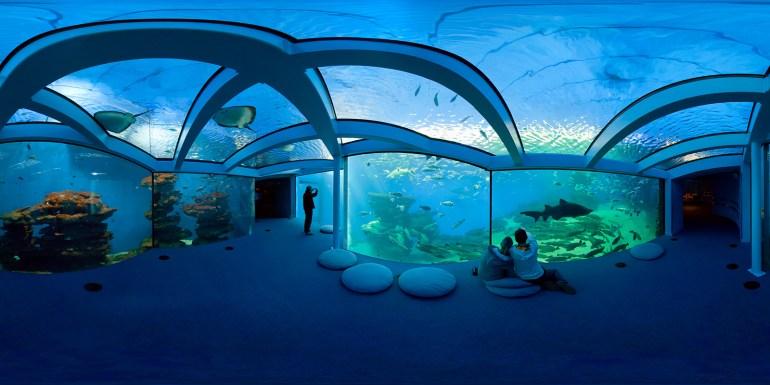 Aquarium Palma de Mallorca / Spain