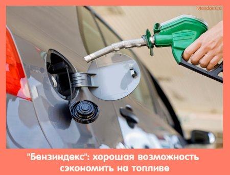 """""""Бензиндекс"""": хорошая возможность сэкономить на топливе"""