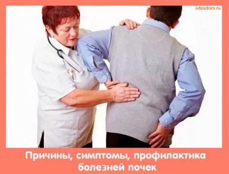 Причины, симптомы, профилактика болезней почек