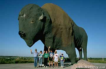 "Photo of world's largest buffalo photo to accompany ""The Big Attraction."""