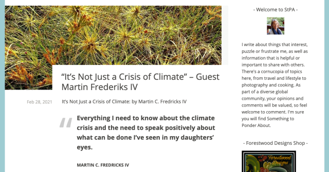 Screen shot of #ClimateCrisis post on StPA blog