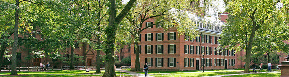 Ivy College Essay