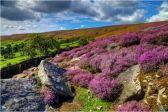 Wicklow National Park, Ireland
