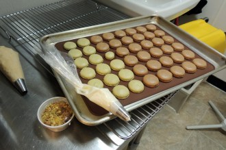 Pistaschio and chocolate macaroons fresh from the oven.