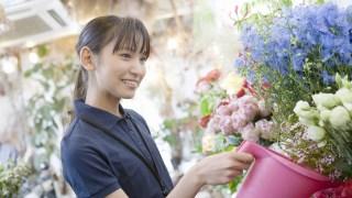 税理士による格安【年額3万円】の確定申告。青色・白色対応。福岡・北九州近郊。