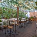 Review: Botanico at The Garage – New Menu In This Singapore Botanic Gardens Stunner