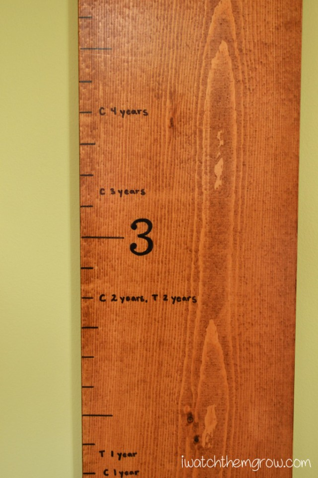 DIY Wood Growth Chart | iwatchthemgrow.com