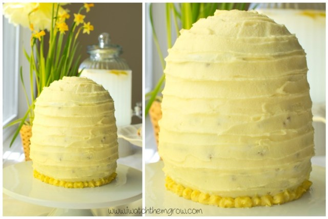 honey bee party beehive cake