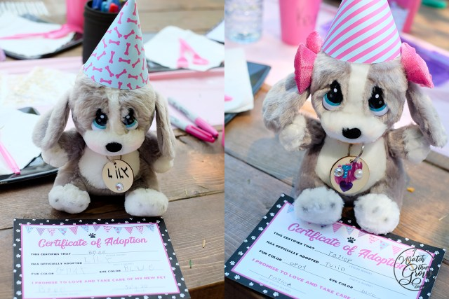 "Plush puppies for an ""Adopt a Puppy"" party, wearing party hats, with crafted dog tags and adoption certificates."