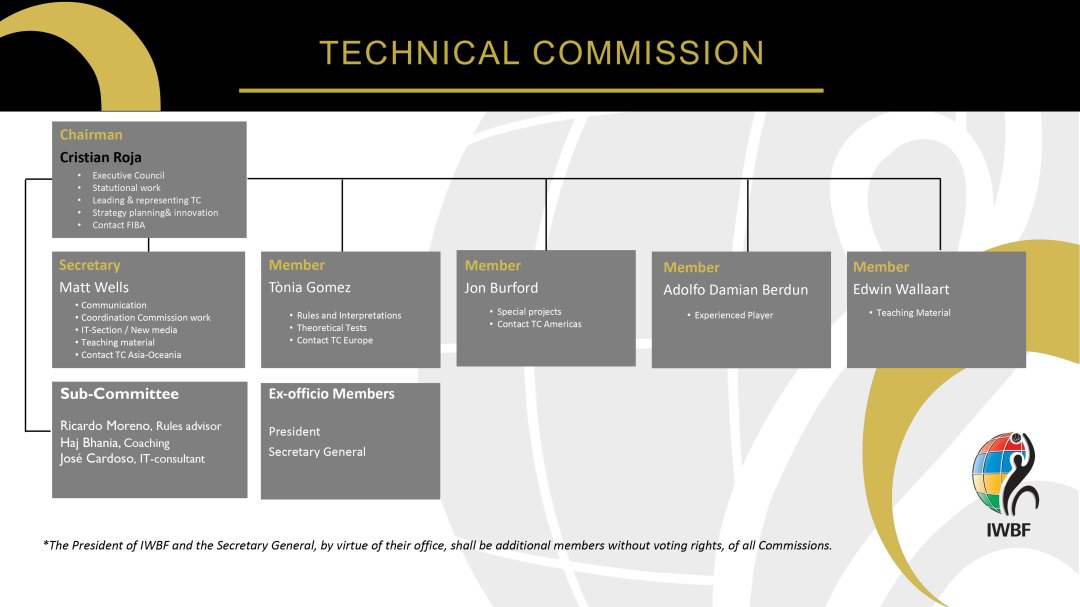 Organisation structure of the Technical Commission