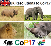 UK CoP17 Petition_1