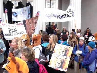 March for Lions_28 November 2015 013