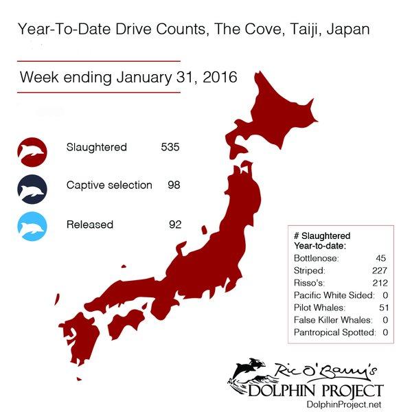 Taiji to Date_1 Feb 2016