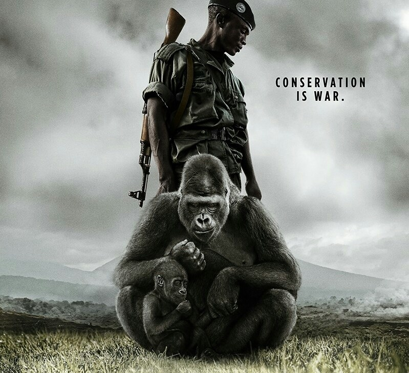 Conservation is War