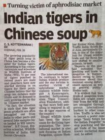 Tiger soup