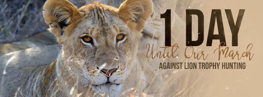 March for Lions_2