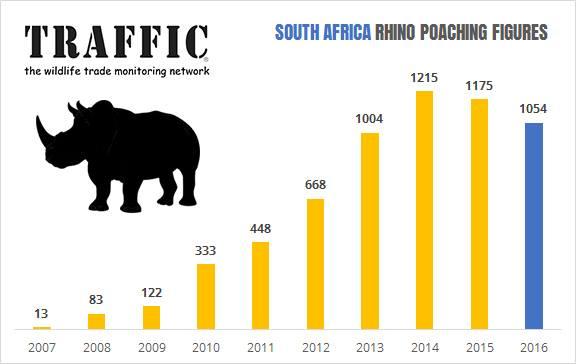 Traffic_Rhino Poaching_2016