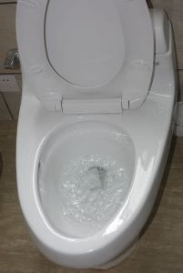how to unblock a toilet pipe | how to unclog toilet when nothing works | How to unblock a badly blocked toilet | blocked toilet pipe | clogged toilet drain | tips to unblock toilet
