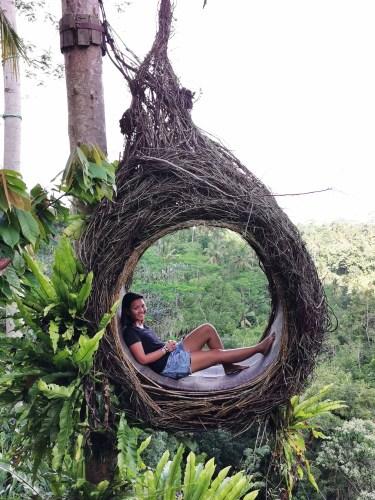 One of the bird's nest in Satria Coffee Plantation