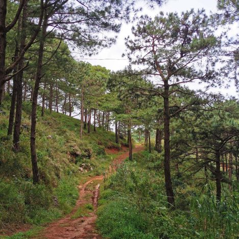 Hotels in Tagaytay That Are Now Open For Tourists