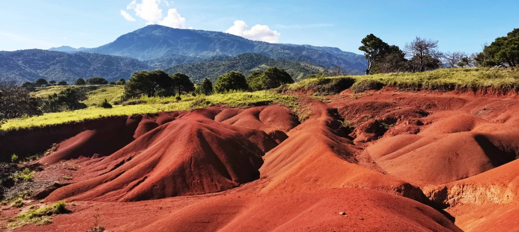 Red soil up close