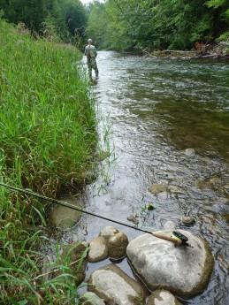 Upper Credit River