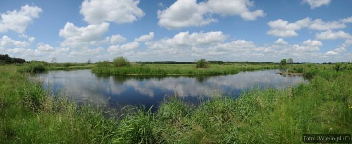 DSC_7523 Panorama