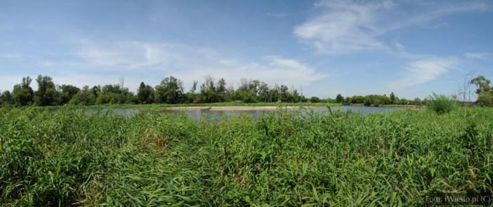 DSC_9110 Panorama