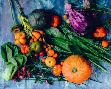 Thanksgiving autumn vegetables and squash