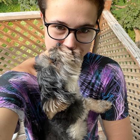 Mia, puppy, dog, yorkie