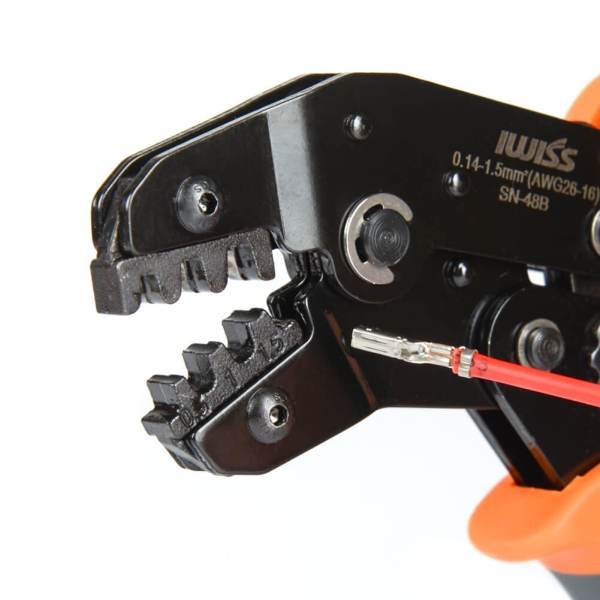 SN-48B detalle de la mandíbula de la cabeza