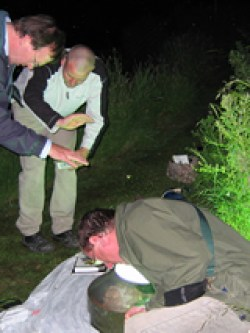 Moth trapping at Haseley © CP