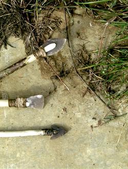 Flint arrowheads © RP