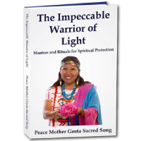Impeccable-Warrior-of-Light-Book